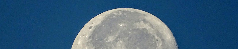 cropped-dsc03044-1.jpg